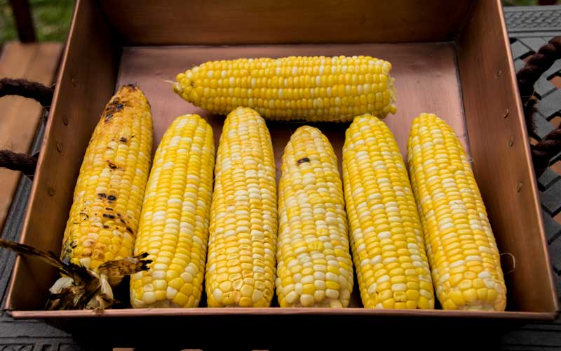 Roasted Corn Test with All Corn